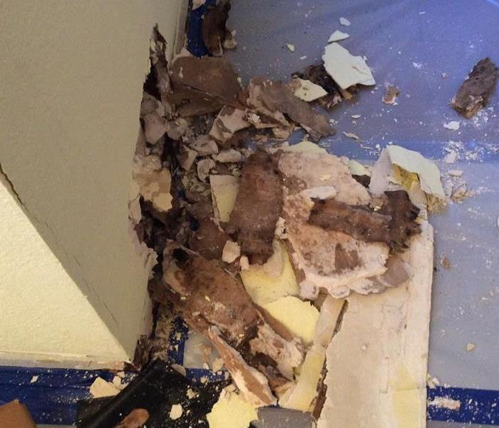 Mold Remediation Job in Home Before