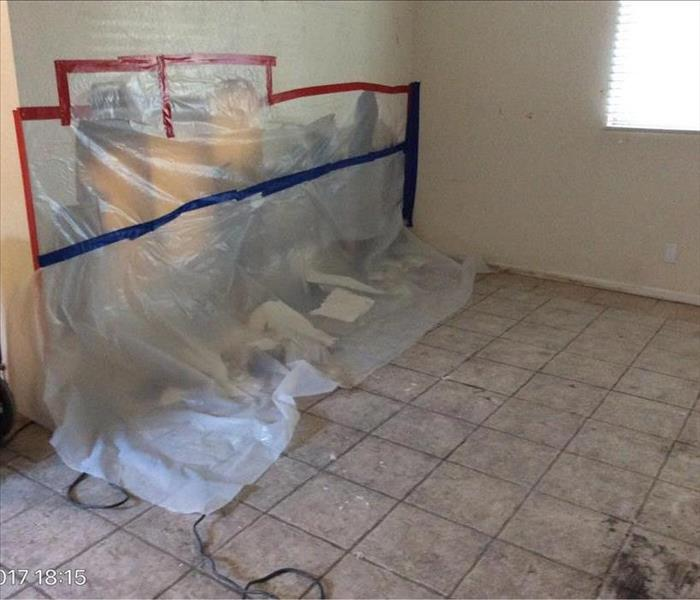 Mold Damage in Las Vegas Home After