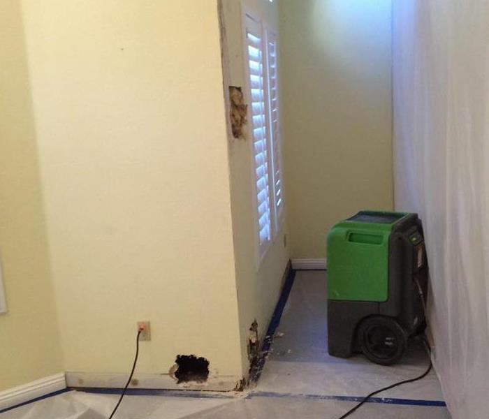 Mold Remediation Job in Home After