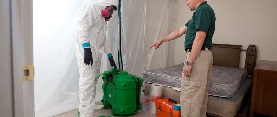 Northwest Las Vegas, NV mold removal process